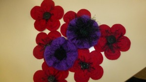 Purple Poppies for animals